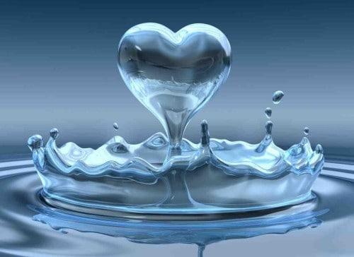 woda podstawa diety zdrowego organizmu