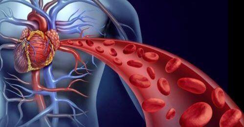 cardioactive skutecznie obniża ciśnienie i likwiduje zatory w żyłach