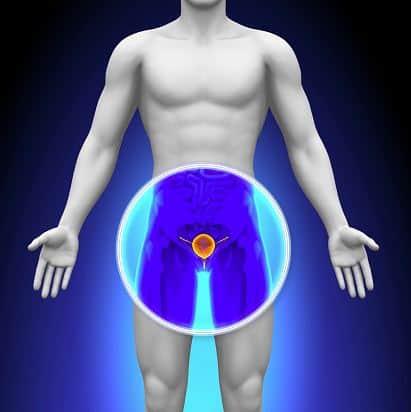 urotrin skutecznie wspomaga organizm w walce z zapaleniem prostaty