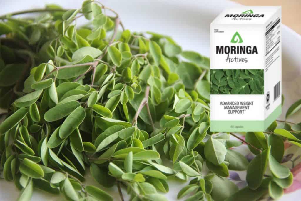 Moringa Actives wlasciwosci skladniki ulotka